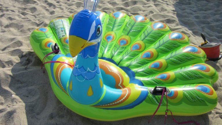 gonflable paon attaché à la plage avec stopenvol