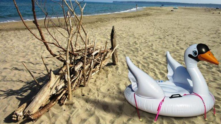 stopenvol fixe un cygne gonflable à la plage
